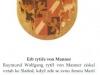 sixtinska-madona-darce-obrazu
